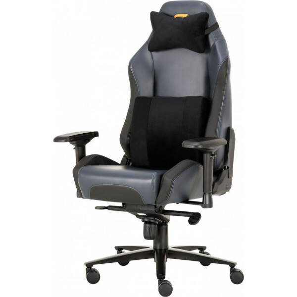 Купить Кресла, GT Racer X-2610 Ash/Black