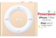 Купить - MP3 / MP4-плеер  Apple A1373 iPod shuffle 2GB Gold (MKM92RP/A)